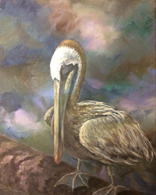 Mister Pelican