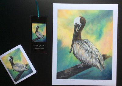 Pelican Friend